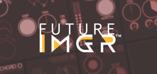 Future IMGR